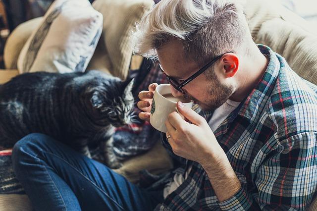 kočka u páníčka.jpg