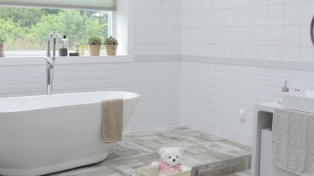 plyšák v koupelně